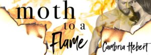 moth-to-a-flame-fb-banner
