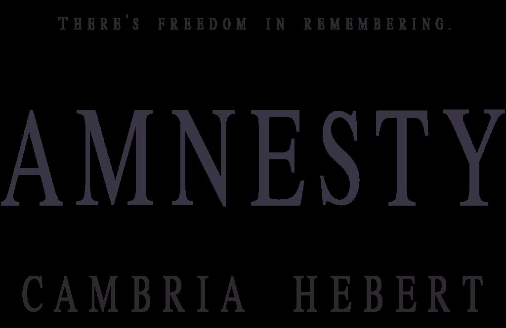 Title-Amnesty
